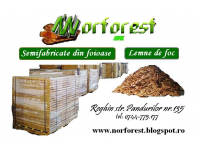 Norforest srl